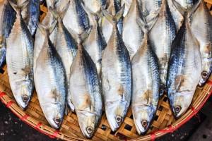 fish-market-wt-johnson
