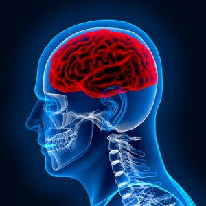 How to Prevent Brain Injuries